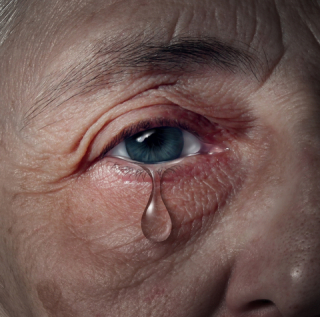 Elder-abuse-photo